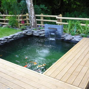 Pond construction cotswold koi for Koi pond construction cost